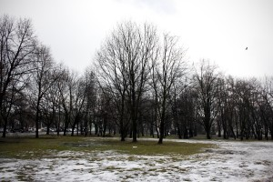 "A general view of the ""Ogrod Krasinskich"" park in Warsaw on February 13, 2014."