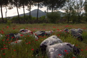 """May 23, 2015 – Terzigno, Italy: Dozens of bags containing textiles waste are seen near Ranieri quarry. Ranieri quarry is an area of extraction of lava material disposed on June 5, 1995 with the establishment of the Vesuvius National Park. The landfill, which lies entirely in the Vesuvius National Park, despite the environmental constraints, in 2000 was used as a landfill with a promise to be """"cleaned up"""" within a year. Due to the loss of volume and the collapse of the waterproof membrane that covered the landfill at the quarry, it has turned into a lake of rainwater unhealthy where floating waste of all kinds."""