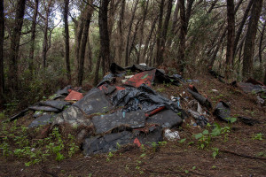 February 4, 2014 – Castel Volturno, Italy: Textile illegally dumped in the pine forest, few meters from the sea.
