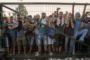 Migrants behind the gates that separates Serbia from Hungary in Horgos, Serbia on September 16, 2015. Hungary's border with Serbia has become a major crossing point into the European Union, with more than 160,000 access Hungary so far this year.