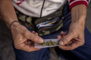 "A man is seen rolling a joint made with canapa light during the industrial hemp and medical cannabis fair ""Canapa in mostra"" in Naples, Italy on October, 26, 2018. According to the Italian law 242 approved in December 2016, the production and marketing of hemp in Italy is legal if cannabis has a content of THC (tetrahydrocannabinol, the active ingredient) which doesn't exceed 0,6%."
