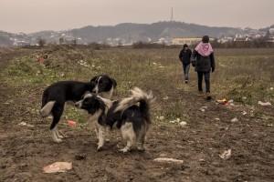 Migrants walk outise a refugee camp in Velika Kladusa, Bosnia and Herzegovin on November 30, 2018.