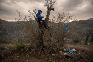 A child chops wood from a tree to prepare the nght fire inside the Moria refugee camp on the island of Lesbos in Greece on February 21, 2020. About 20000 migrants and asylum seekers – mostly coming from Afghanistan and Syria – live in the official Moria camp and in the olive grove that is located nearby.
